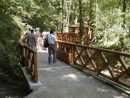 napojení lesní cesty na lávku pro pěší